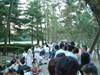 Izumo_080812_005